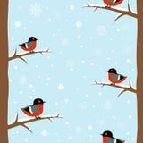 Nahtloses Muster des Winter Bullfinch-Vogels vektor abbildung