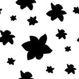 Nahtloses Muster Die schwarze Narzisse blüht verschiedene Größen lokalisiert auf Weiß Auch im corel abgehobenen Betrag Lizenzfreie Stockbilder