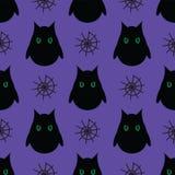 Nahtloses Muster für Halloween Eulen- und Spinnennetz auf purpurrotem BAC Stockfoto
