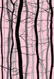 Nahtloses Muster Forest Branchess Nebeln Sie morgens Frühling, Baum-Vektorillustration des Winters bloße ein Lizenzfreies Stockbild