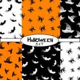 Nahtloses Muster Halloween-Ikonen von den Tieren, Hut Stockbild