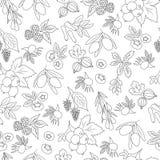 Nahtloses Muster mit Beeren Stockbilder