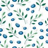 Nahtloses Muster mit Blaubeeren und Blättern Stockbilder