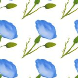 Nahtloses Muster mit blauen Aquarellblumen Weißer Hintergrund Lizenzfreie Stockfotografie