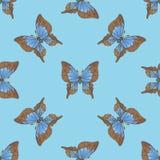 Nahtloses Muster mit blauen Schmetterlingen Stockbilder