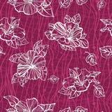 Nahtloses Muster mit Blumen der Hibiscuse Lizenzfreie Stockfotografie