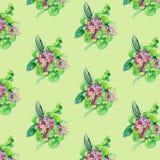 Nahtloses Muster mit Blumen und Bl?ttern lizenzfreie abbildung