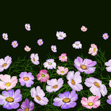 Nahtloses Muster mit Blumengrenze auf schwarzem Hintergrund Stockfotografie
