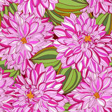 Nahtloses Muster mit dekorativer Dahlie Stockbilder