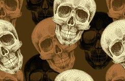 Nahtloses Muster mit den Schädeln Stockbild