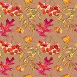 Nahtloses Muster mit Eicheln und Herbsteiche verlässt in Orange, in Beige, in Braunem und in Gelbem Vervollkommnen Sie für Tapete Stockfotografie