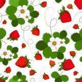 Nahtloses Muster mit einer Erdbeere Lizenzfreie Stockfotos