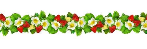 Nahtloses Muster mit Erdbeere blüht, Beeren und Blätter Stockbild