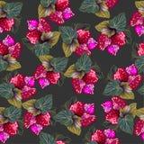 Nahtloses Muster mit Erdbeere und Blättern auf schwarzem Hintergrund Stockbild