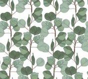 Nahtloses Muster mit Eukalyptus Lizenzfreies Stockfoto
