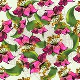 Nahtloses Muster mit exotischen Blumen auf Wightspitzehintergrund Lizenzfreies Stockfoto