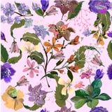 Nahtloses Muster mit exotischen Mehrfarbenblumen auf Rosa Lizenzfreies Stockfoto
