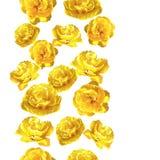 Nahtloses Muster mit flaumigen gelben Tulpen Schöne realistische Blumen und Knospen Stockfoto