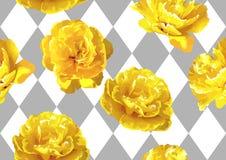 Nahtloses Muster mit flaumigen gelben Tulpen Schöne realistische Blumen und Knospen Lizenzfreies Stockbild