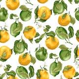 Nahtloses Muster mit Früchten Frische Orangen und Kalke mit flowe Stockbild