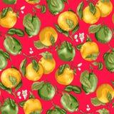Nahtloses Muster mit Früchten Frische Orangen und Kalke mit flowe Lizenzfreies Stockfoto
