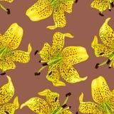 Nahtloses Muster mit Frühlingsblumenlilie Blumenmuster für Tapete oder Gewebe Watercolourillustration handgemalt lizenzfreies stockfoto