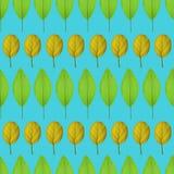 Nahtloses Muster mit Gelb und Grün verlässt auf einem grünen Hintergrund Stockfotos