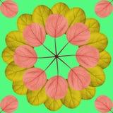 Nahtloses Muster mit Gelbem und Rot verlässt auf einem grünen Hintergrund Lizenzfreies Stockfoto