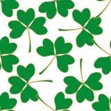 Nahtloses Muster mit grünem Klee Lizenzfreies Stockfoto