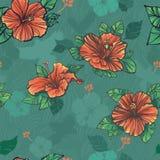 Nahtloses Muster mit grünen Hibiscusblumen Stockfoto