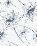 Nahtloses Muster mit Hand gezeichneten Blumen Stockbild