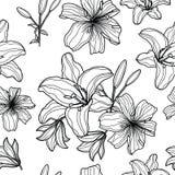 Nahtloses Muster mit Hand gezeichneten Lilien lizenzfreie abbildung