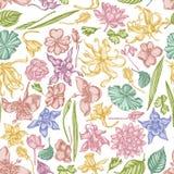 Nahtloses Muster mit Handgezogenem Pastellilang-ilang, impatiens, Narzisse, tigridia, Lotos, aquilegia lizenzfreie abbildung