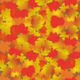 Nahtloses Muster mit hellem Herbstlaub Lizenzfreies Stockbild