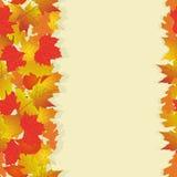 Nahtloses Muster mit hellem Herbstlaub Stockfoto