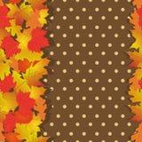 Nahtloses Muster mit hellem Herbstlaub Stockfotografie