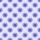 Nahtloses Muster mit hellen Kornblumen und Punkten auf blauem Hintergrund Lizenzfreie Stockbilder