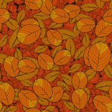 Nahtloses Muster mit Herbstblättern Vektor ENV 10 Stockbilder