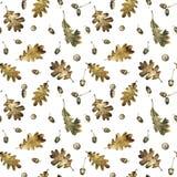 Nahtloses Muster mit Herbstlaub der Eiche und der Eicheln Hand gezeichnete Illustration mit farbigen Bleistiften stockbild
