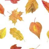 Nahtloses Muster mit Herbstlaub im Aquarell Stockfotos
