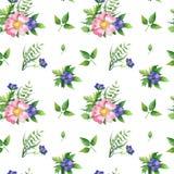 Nahtloses Muster mit Hundrose, grünen Leben und blauer Blume lizenzfreie stockbilder