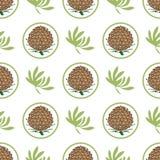 Nahtloses Muster mit Kiefernkegeln Tanne, Zeder, gezierter Baumhintergrund Eco Aufkleber stock abbildung
