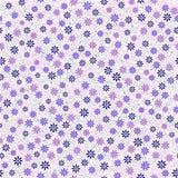 Nahtloses Muster mit kleinem leichtem Gänseblümchen blüht im Rosa, blau Stockfotos