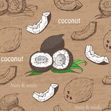 Nahtloses Muster mit Kokosnüssen auf einem Weinlesehintergrund Stockfotos