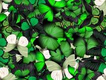Nahtloses Muster mit Los verschiedenen butterflys Stockfotos