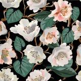 Nahtloses Muster mit Magnolienzusammenfassung blüht auf Schwarzem Stockbild