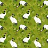 Nahtloses Muster mit Mandschurenkranichen, Retro- Lotus Floral Background, Mode-Druck, Geburtstags-Vogel-Dekoration lizenzfreie abbildung