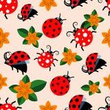 Nahtloses Muster mit Marienkäfern und Blumen Stockbilder