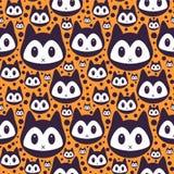 Nahtloses Muster mit Miezekatzegesichtern Stockfotografie