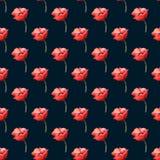Nahtloses Muster mit Mohnblumen Stockfoto
